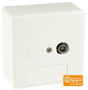 BTV 1 Hoofdaansluiting | Abonnee overname punt Ziggo