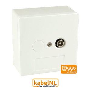 BTV 1 Hoofdaansluiting   Abonnee overname punt Ziggo